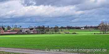 Alternativen zur Dillenburg: CDU hat die Kraftwerksflächen im Blick - Dattelner Morgenpost