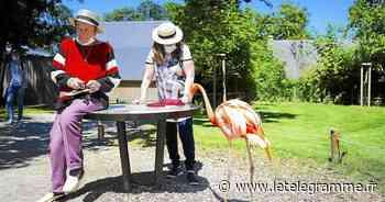 On vous emmène visiter les parcs du pays de Vannes - Le Télégramme