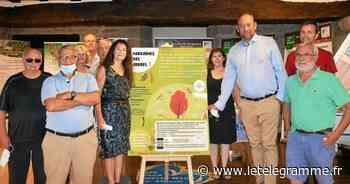 Vannes - Vannes, les forêts au cœur de l'exposition de l'association Clim'actions - Le Télégramme