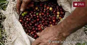 Fairer Handel: Wieso Tettnang einen Eineweltladen erhält - Schwäbische