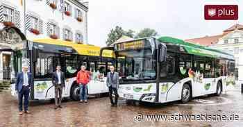 Tettnang: Warum wieder mehr Menschen den Bus nehmen sollen - Schwäbische