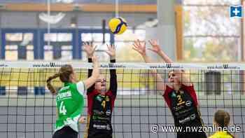 Bedarf für Schulen und Verein: SPD in Cloppenburg fordert Dreifeldsporthalle - Nordwest-Zeitung