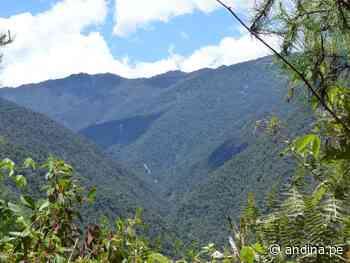Oxapampa: piden se acelere trámites reconocer creación de reserva Chontabamba-Huancabamba - Agencia Andina