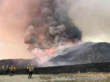 Paar löste bei Baby-Party Waldbrand aus – Feuerwehrmann gestorben