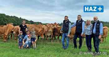 Burgwedel: Auf Hof Kreuzkamp gibt es sogar einen Automaten für Rindfleisch, Milch und Eier - Hannoversche Allgemeine