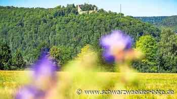 Wettbewerb in Nagold - Stadt sucht die schönsten Fotos - Schwarzwälder Bote