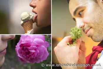 Tips to regain your sense of taste and smell after Covid