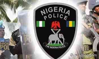 Police arrest two suspects in Gombe over fertiliser adulteration - Punch Newspapers