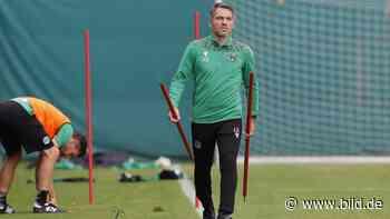 Hannover 96: Jan Zimmermann tritt auf die Entwicklungs-Bremse - BILD