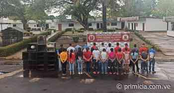 Más de 30 detenidos en Caicara del Orinoco por incumplir cuarentena - primicia.com.ve