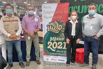 Avanza vacunación al sector productivo – La Prensa de Monclova - La Prensa De Monclova