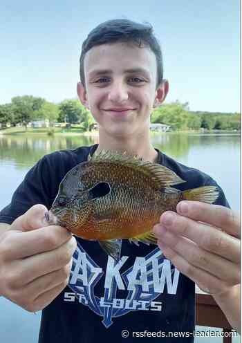 St. Louis teen beats dad's state record after catching 5-ounce longear sunfish