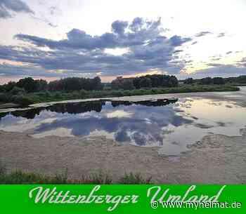 Wittenberger Umland ! - Lutherstadt Wittenberg - myheimat.de - myheimat.de