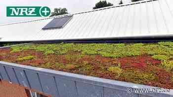 Rees: Der alte Bauhof hat ein neues Dach bekommen - NRZ