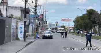 Hombre se quita la vida en plena vía pública en San José Mayorazgo - Tribunanoticias