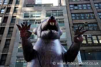 Union protest hero Scabby the rat survives Trump-era legal challenge