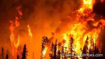 Far Eastern Yakutsk city under threat from unprecedented forest fires - bne IntelliNews