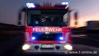 Feueralarm in Wohnung in Haldensleben: Katzen am Herd? - t-online.de