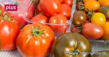 Gemüseproduzenten stecken auch in Lampertheim in der Klemme - Echo Online