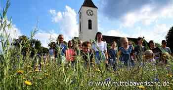 Ministranten lassen Pfarrgarten blühen - Region Kelheim - Nachrichten - Mittelbayerische