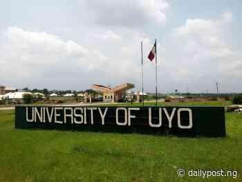 Uyo varsity traders lament demolition of shops - Daily Post Nigeria