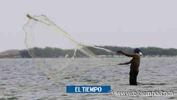 Millonaria inversión para recuperar caño y Mallorquín en Barranquilla - El Tiempo