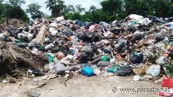 Asociación acusa de ecocida al Gobierno de Playa del Carmen por basurero clandestino - PorEsto