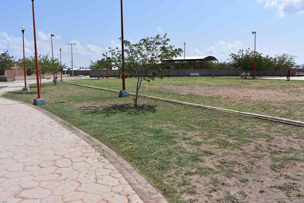 Se llevan a cabo trabajos de limpieza en parque Las Palomas de Colonia Colosio - Juárez a Diario