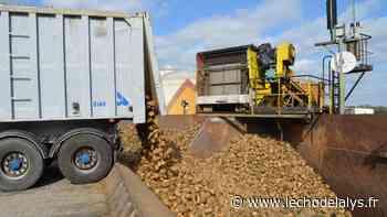 Lillers : la sucrerie Tereos, lauréate de France Relance - L'Écho de la Lys