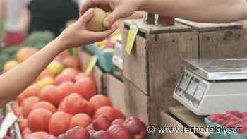 précédent Un marché de la nature samedi à Lillers - L'Écho de la Lys