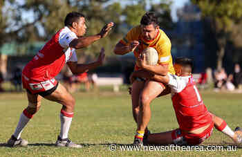 Coffs Harbour Comets defeat South Grafton Rebels to continue seven game winning run - News Of The Area