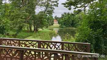 Staudamm im Schlosspark Wilhelmsthal nach sechs Jahren saniert   MDR.DE - MDR