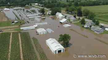 Niagara County vegetable crops take a pounding from hail, rain