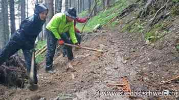 In Elm arbeiten Freiwillige am Wald der Zukunft - suedostschweiz.ch