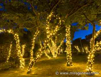 Lighting up Toowoomba's CBD - Mirage News