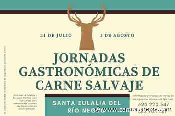 Santa Eulalia de Río Negro organiza las Jornadas Gastronómicas de Carne Salvaje - Zamora News
