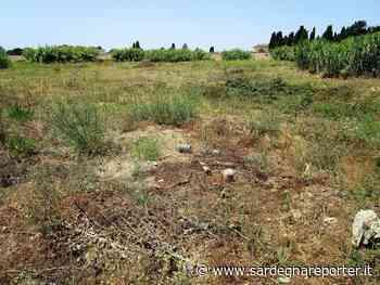 Oristano - Rischio incendi delle sterpaglie tra il cimitero e la caserma della Polizia - Sardegna Reporter