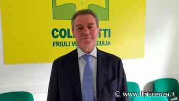 Coldiretti Piacenza, arriva un commissario: è Giovanni Benedetti - IlPiacenza