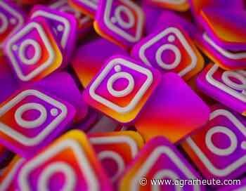 FAQ für Agrarblogger: Werbung auf Instagram | agrarheute.com - agrarheute.com
