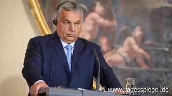 """Verbot von """"Werbung"""" für Homo- und Transsexualität: Orban lässt Referendum über umstrittenes LGBTQ-Gesetz abhalten - Tagesspiegel"""