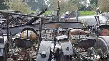 Feuer im Museumsdepot - Diese Skelette waren Trecker-Oldies - BILD