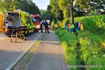 Auto mist bocht en knalt tegen boom in Meeuwen: bestuurder geklemd