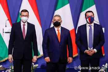 Poolse PiS-partij verscheurd tussen afgrijzen voor Moskou en afkeer van Brussel - Knack.be