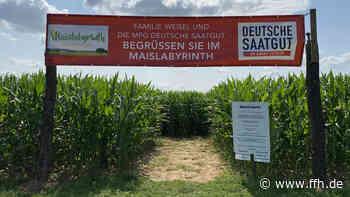 Maislabyrinth in Lich-Eberstadt öffnet am Freitag - HIT RADIO FFH