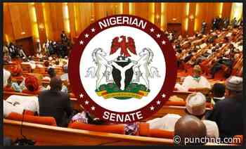 Why ex-perm secs, others must return mismanaged N1tn – Senate - Punch Newspapers