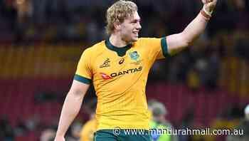 Wallaby Hanigan to return to NSW Waratahs - Mandurah Mail