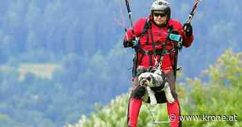 Gleitschirmfliegen - Hündin liebt luftige Höhen und stellt Rekord auf - Kronen Zeitung