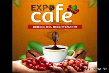 Puno: el galardonado café de Sandia es la estrella en la Expo Café del Bicentenario - Agencia Andina