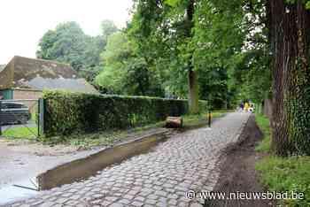 Paaltje en politie moeten ongewenste auto's van kasteeldomei... (Edegem) - Het Nieuwsblad