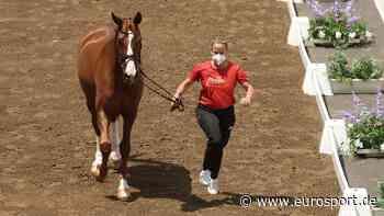 Olympia 2021: Deutsche Dressurpferde für Tokio haben die tierärztliche Verfassungsprüfung bestanden - Eurosport DE